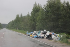 Скнятино. Куча мусора у дороги. Фото Илья Илмарин