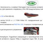 SEO описание раздела «РИБ Флинк» интернет-магазина